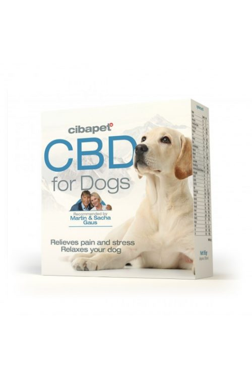 CBD Pastilles For Dogs - cbd pastilles for dogs box 500x750 - CBD Pastilles For Dogs
