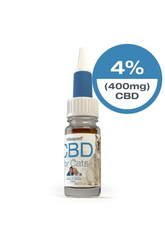 homepage - cbd oil for cats closed - Homepage
