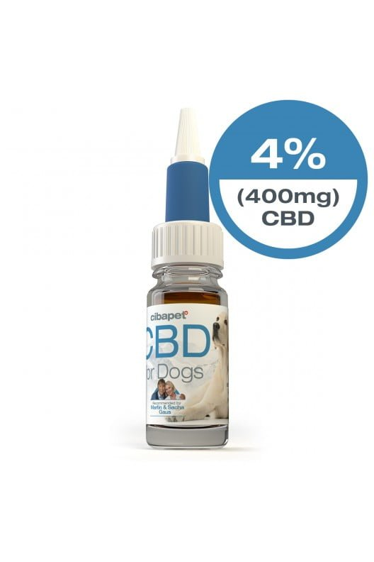 homepage - cbd oil for dogs closed - Homepage
