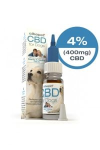 4% CBD Oil For Dogs South Africa - cbd oil for dogs open 200x300 - 4% CBD Oil For Dogs South Africa