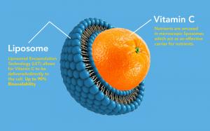 Cibdol Liposomal Vitamin C With CBD - liposomal Vitamin C 300x187 - Cibdol Liposomal Vitamin C With CBD