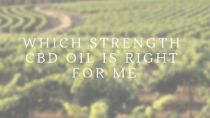 What Strength CBD oil is right for me and what is the difference - Untitled design 1 300x169 - What Strength CBD oil is right for me and what is the difference