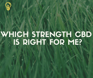 What Strength CBD oil is right for me and what is the difference - Untitled design 300x251 - What Strength CBD oil is right for me and what is the difference