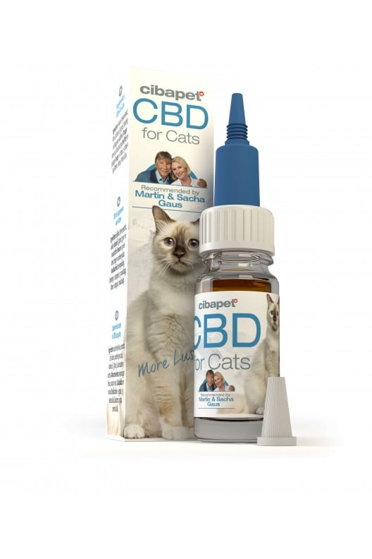homepage - cbd oil for cats - Homepage