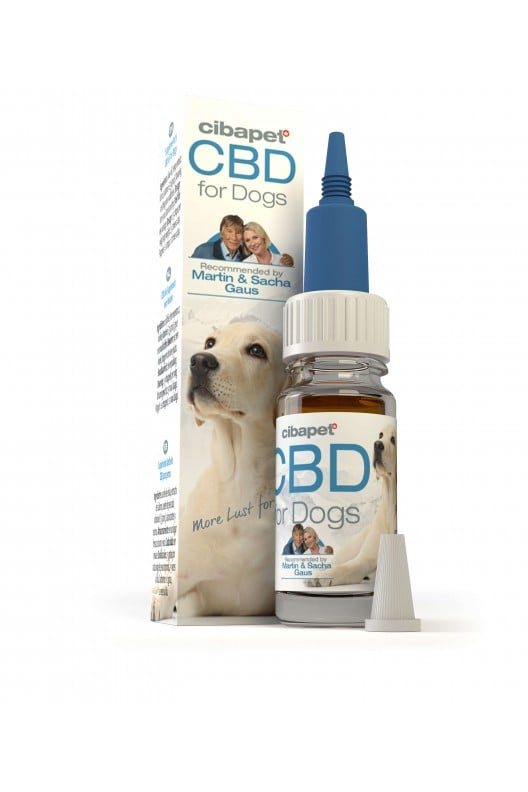 homepage - cbd oil for dogs - Homepage