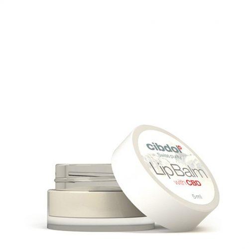 cibdol cbd lip balm with mango seed butter - cbd lipbalm 500x500 - Cibdol CBD Lip Balm with Mango Seed Butter