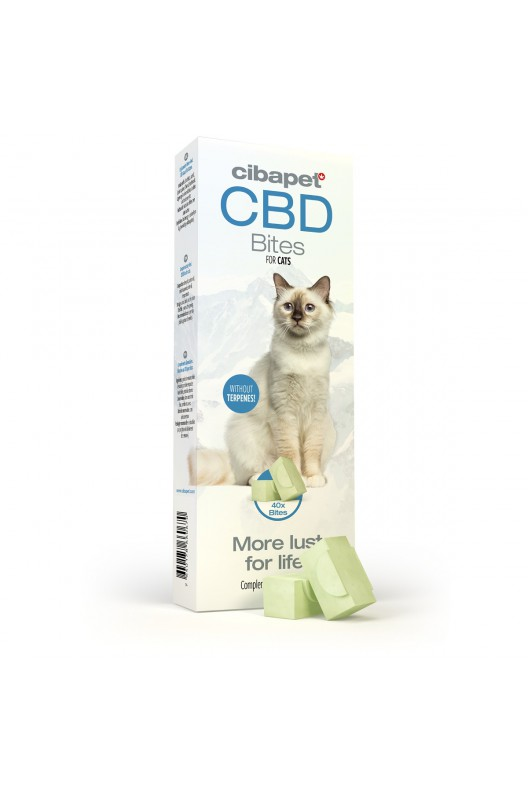 homepage - cbd bites for cats - Homepage