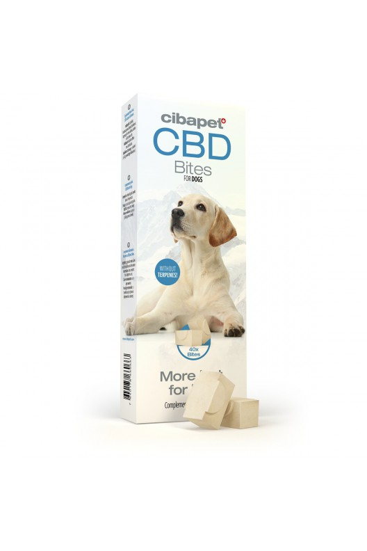 homepage - cbdbites for dogs - Homepage